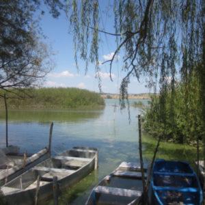 foto x territorio e dintorni lago di chiusi 2