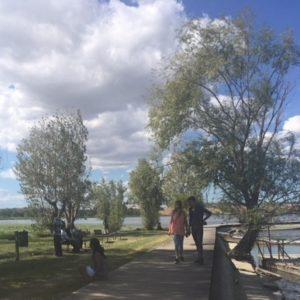 foto x territorio e dintorni lago di chiusi 3