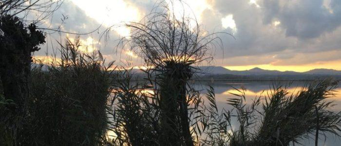 foto sfondo x Territorio e dintorni Lago di Montepulicano IMG_7433a __