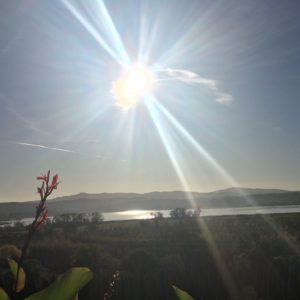 MONTE AMIATA foto 4 vista dal Lago di Chiusi sulle montagne IMG_5974 __