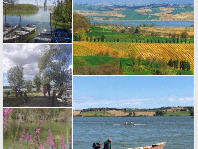 IMG_1011 Lago di Chiusi